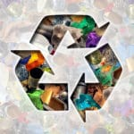 Recykling odpadów - wlaczoszczedzanie.pl - Depositphotos /@ lightsource