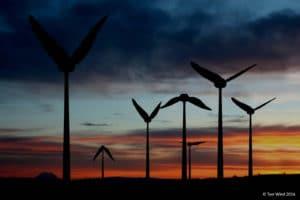@ Tyer Wind