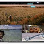 Światowy Fundusz na Rzecz Przyrody - World Wide Fund for Nature (WWF)