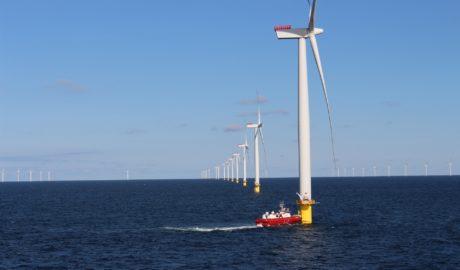 Potencjał polskich obszarów morskich pod farmy wiatrowe jest ogromny