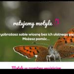 Ratujmy motyle