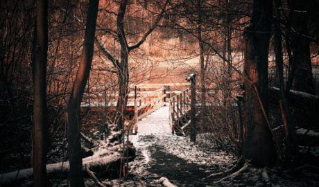 Z roku na rok na skutek zmian klimatu w Polsce pada coraz mniej śniegu