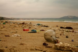 Świetnym przykładem green marketingu a zarazem ekościemy są ubrania i produkty wykonane z plastikowych śmieci wyłowionych z oceanu