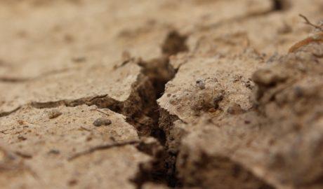 W tym roku Polsce grozi największa susza w dotychczasowej historii pomiarów