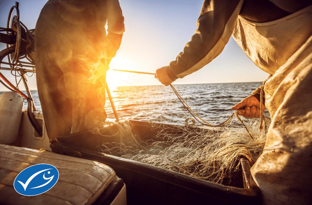 Przyszłość oceanów w rękach konsumentów
