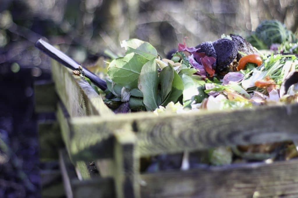 Pandemia przyczyniła się do zwiększenia skali marnowania żywności