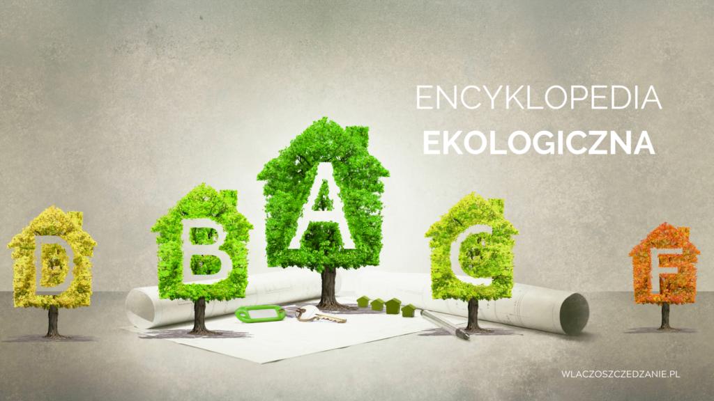 Encyklopedia ekologiczna